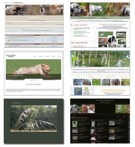 site-articles
